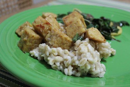 tempeh over barley