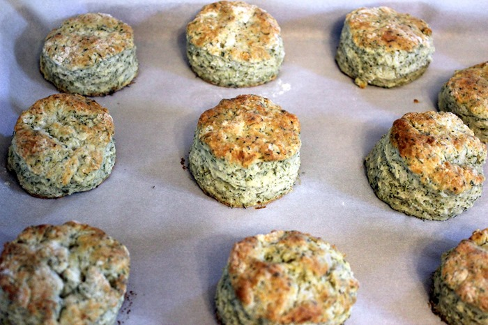 herbed yogurt biscuits from The Kitchn