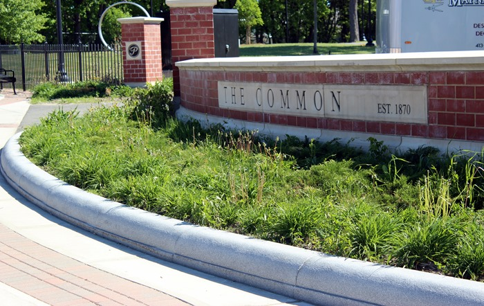 Pittsfield Common sign