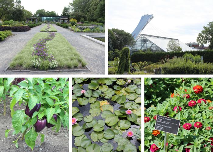 Montreal Botanical Gardens Collage