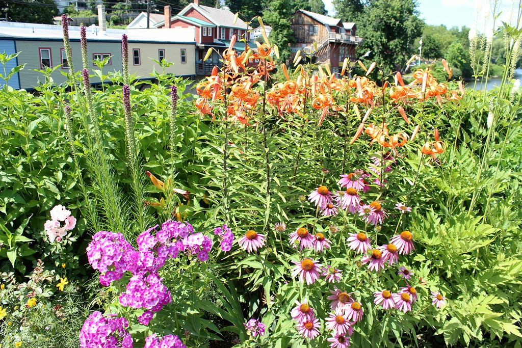 shelburne falls single guys This village forms the commercial/industrial heart of two scenic farm towns — buckland and shelburne  single family  in shelburne falls.