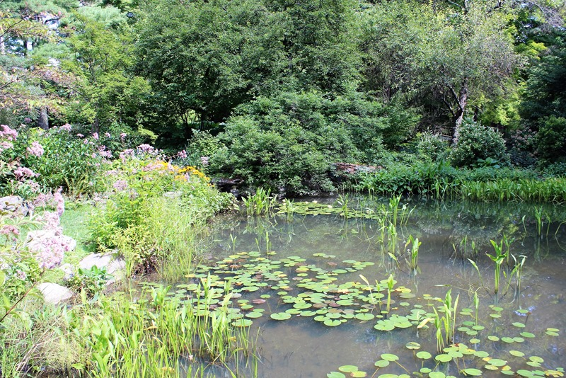 Berkshire Botanical Gardens (3)