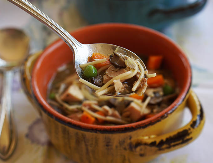 chicken_noodle_soup1