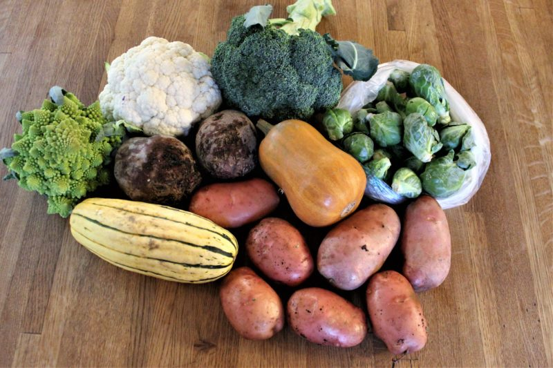 Plugging Along (CSA Menu Plan #83)